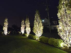 Outdoor Lighting Designs
