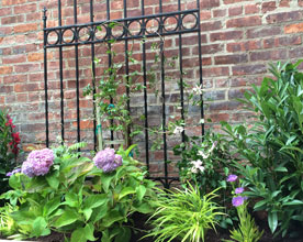 Beautifying the Garden of an Historic Building